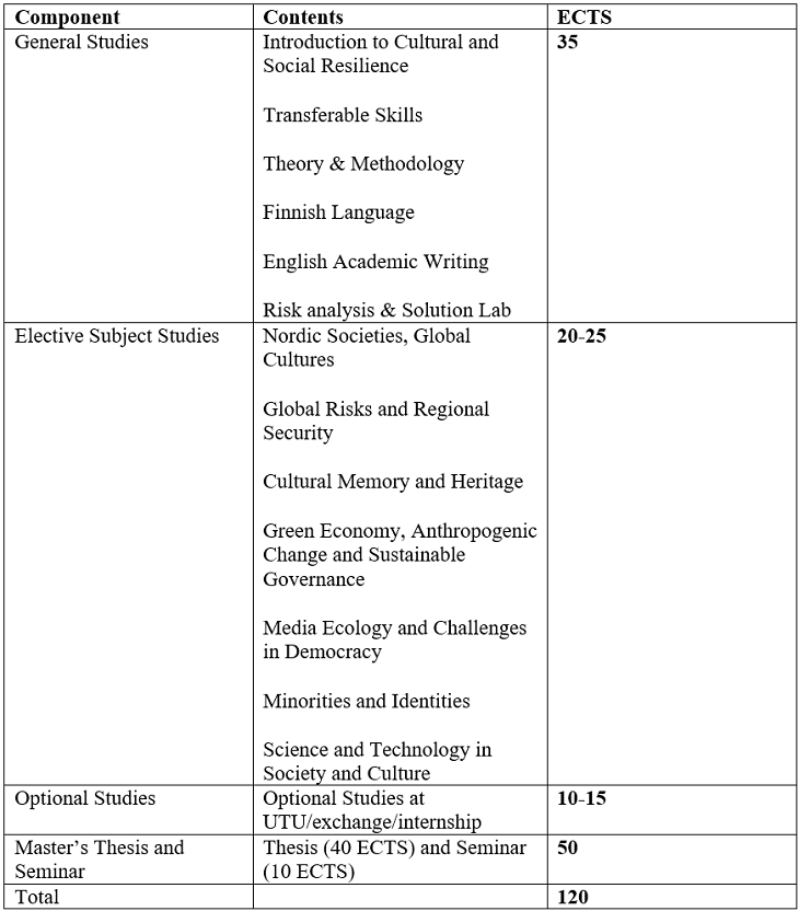 60796_nordic-culture-programme-structure.png