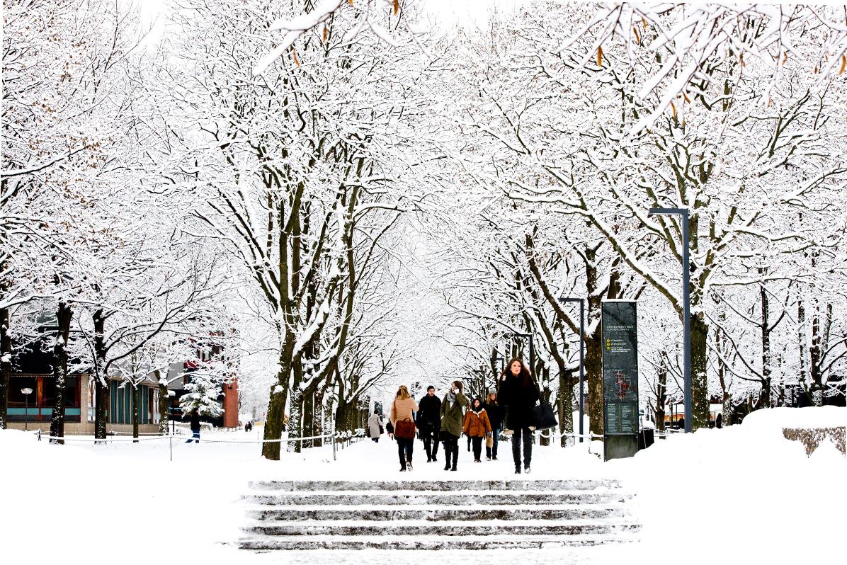 65605_Winter_campus_Anders_Lien_UiO.jpg